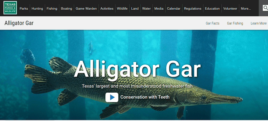 TPWD has an extensive Gar Program that can be appreciated by any Outdoors Adventurer