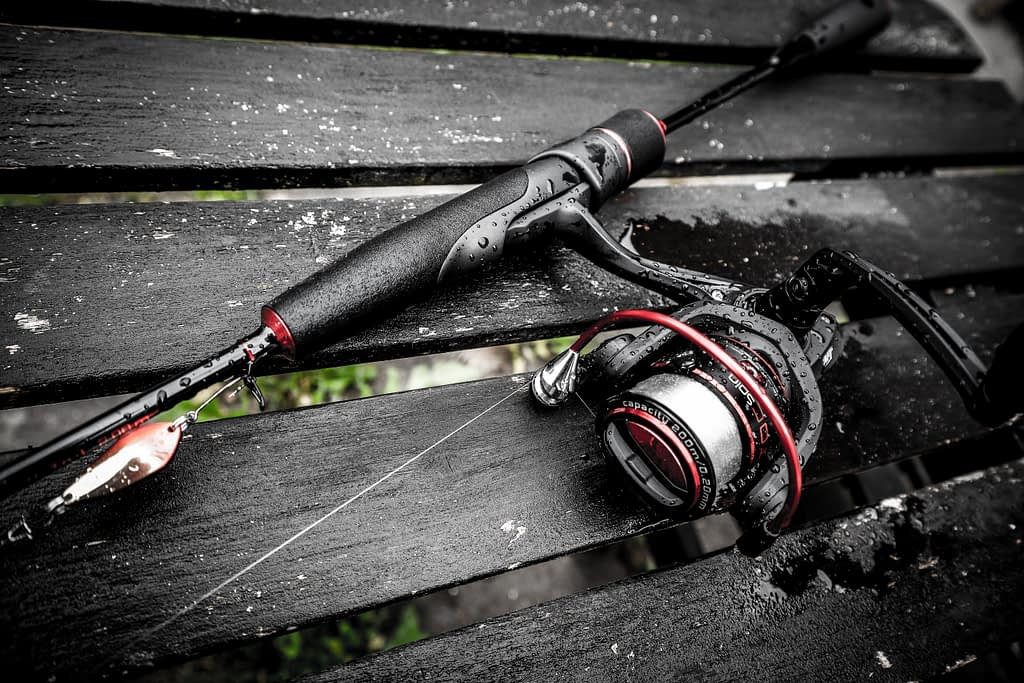The spinning reel is a very forgiving system for the new angler of any age
