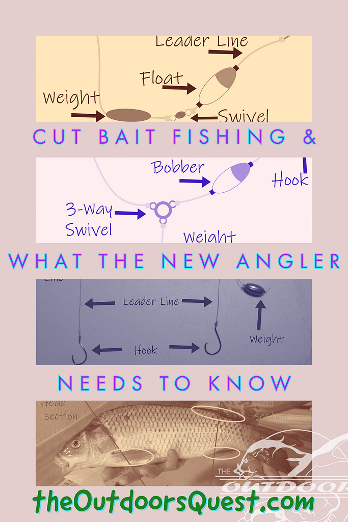 Cut bait can be the new angler's best friend. Learn the tips and tricks to get you started today!