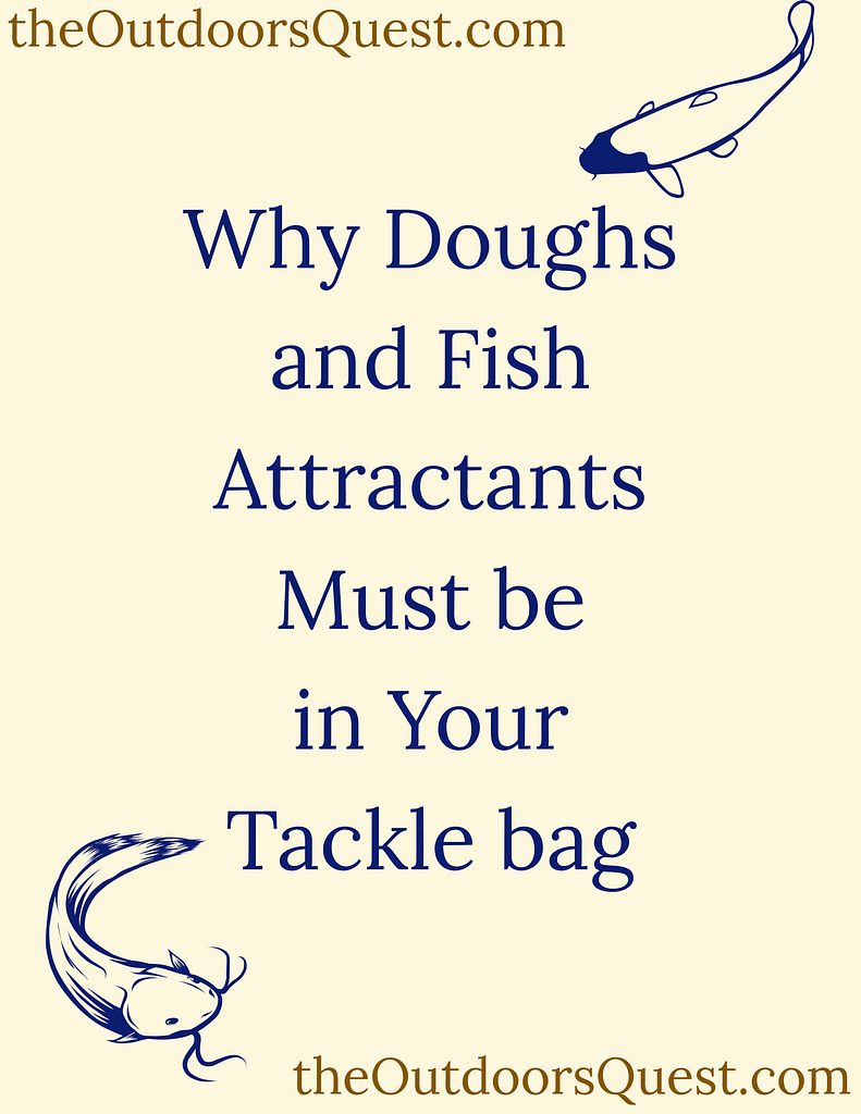 Using Dough baits, Fish attractants, and Bait scents can enhance your fishing experience exponentially!